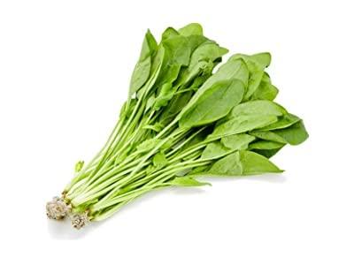 国内産 水耕野菜 サラダほうれん草 1パック 80g